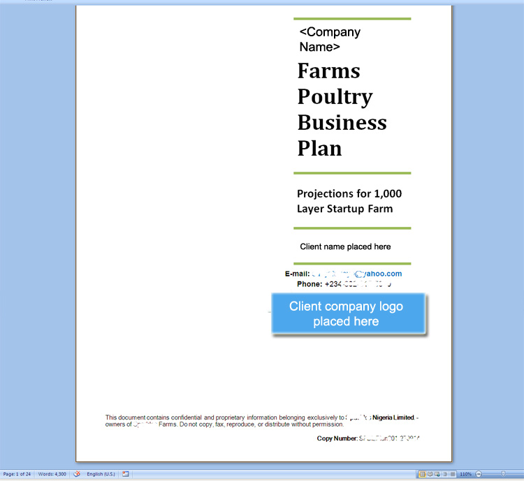 Screenshot of the 1,000 bird Poultry Layer Farm Business Plan I prepared and sent to a new client in Nigeria - click to read the article I wrote on it.