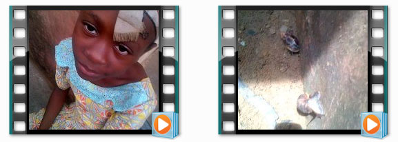 snailery-olu-videos